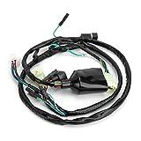 Gorgeri Cable de arnés de cables - Reemplazo de línea de cable de arnés de cables de motocicleta ABS para TRX400EX 1999-2004