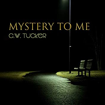 Your A Mystery To Me