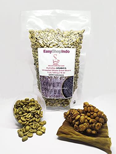 HiyCoffee ARABICA Wild Civet Coffee Kopi Luwak UNROASTED Whole Green Beans 1 Lb / 454 g / 16 oz GAYO Sumatra Aceh Indonesia