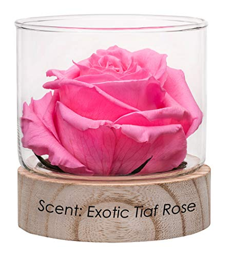 Home Scents 12oz Real Fragrance Flower Lasts 4 Months Aromatherapy Diffuser Birthday Gifts for Women (Scent Exotic Taif Rose)…