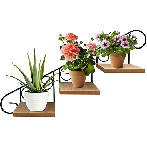 GJCrafts Supporto per vasi da fiori in ferro a 3 strati, ripiano per scale in metallo, espositore per vasi da fiori per piante a parete per esposizione di vasi da fiori interni ed esterni