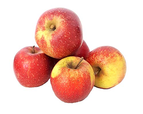 Äpfel Wellant Allergikerapfel aus Deutschland/Bodensee saftig süßer Apfel 1-10 KG (1)