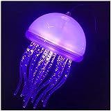 NZDY Lámpara de iluminación de techo interior, lámpara de medusas de fibra óptica que cambia de color automática, música creativa personalizada, restaurante, acuario, bar, sala de exposiciones, luz c
