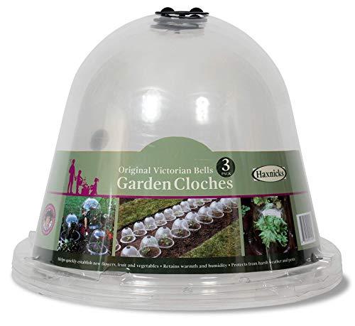 Tierra Garden 50-1100 Haxnicks Campana Protectora para Plantas, Paquete de 3