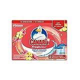 Canard WC Fresh Disc Recharges - Nettoyant Pour Toilette Flowers Oasis - 12 Disques Lot de 2