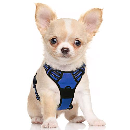 rabbitgoo Dog Harness, No-Pull Pet Harness with 2 Leash Clips, Adjustable Soft Padded Dog Vest, Reflective No-Choke Pet Oxford Vest with Easy Control Handle for Small Dogs, Navy, S