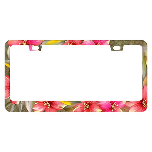DZGlobal Red Hibiscus Floral License Plate Frame Custom Tropical Flowers License Plate Frames Cute Hawaiian Flowers License Plate Holder Aluminum Novelty Auto Car Tag Cover Holder