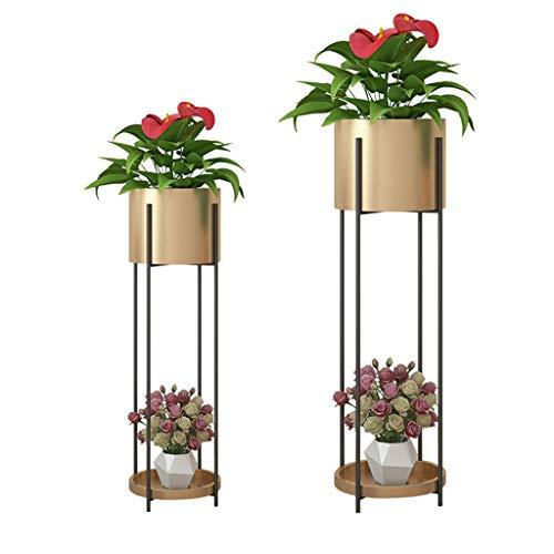Support pour étagères pour Fleurs Support pour Plantes Support pour Plantes Stand Échelle de Fer Balcon Chambre Bureau Terrasse 2 Taille de la Grille 20x72 / 23x85 Cm (LxH) Or