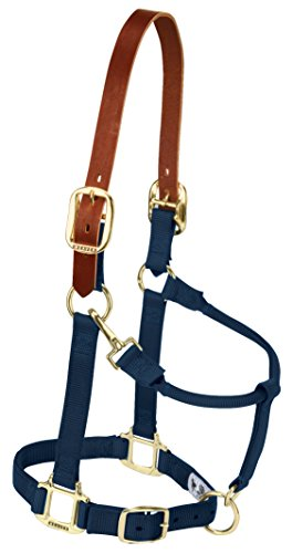 Weaver Leather Nylon Adjustable Breakaway Horse Halter, Average, Navy