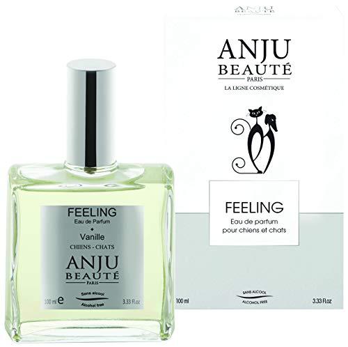 Parfum Feeling ANJU 100 ML REMPLACE C113