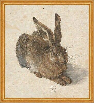 Kunstdruck Der Feldhase Albrecht Dürer Hase Kaninchen Naturstudie LW Alte Meister A2 066
