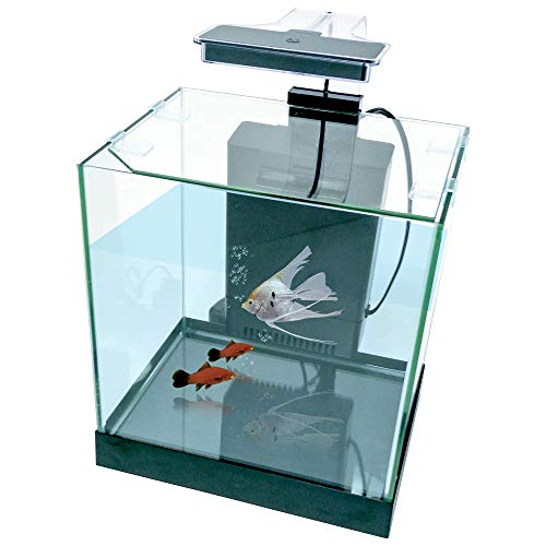 Penn-Plax Cascade All-in-One Desktop Aquarium Kit – Great for Small & Tight Spaces – Marine & Freshwater Applications – 3.2 Gallons