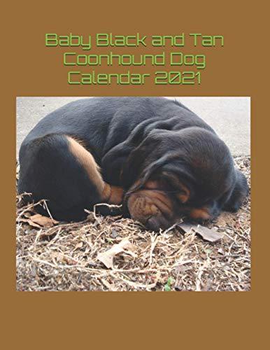 Baby Black and Tan Coonhound Dog Calendar 2021
