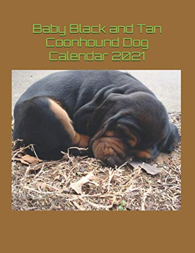 Baby Black and Tan Coonhound Dog Calendar 2021