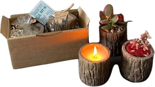 2 candele profumate Candele Eco - Wood - Set di 2 candele profumate in vaso riutilizzabile - Con omaggio in carta Piantabile - Idea Regalo - 2 pezzi - MAS-ECOMMERCE