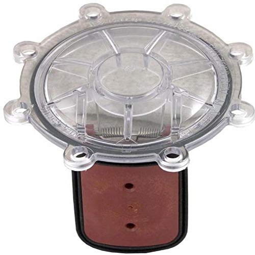 Zodiac 7056 Cover with Flapper Assembly Replacement Kit for Zodiac Jandy Spring Check Valve
