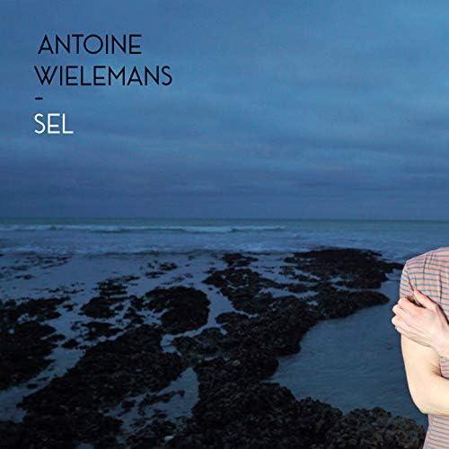 Antoine Wielemans