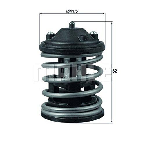 Behr-Thermot-Tronik TX16387D1 Thermostat, Kühlmittel