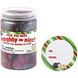 Holiday Time Naughty or Nice Slime Gift Card Holder with Gift Tag Label