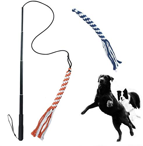 ASOCEA Ausziehbarer Teaser für Hunde, Flirt, Stab für Welpen, Jagdschwanz, interaktives Spielzeug für kleine, mittelgroße und große Hunde, Training, Spielübungen