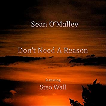 Don't Need a Reason (feat. Steo Wall)