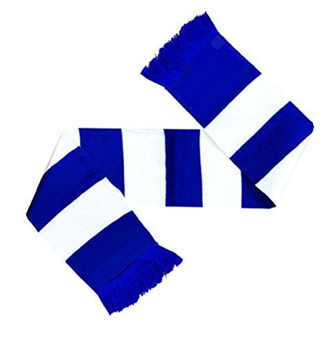 Generic Scarves Fußball-Fanschal blau/weiß gestreifter Schal