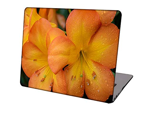 Laptop Case for Newest MacBook Pro 15 inch Model A1707/A1990,Neo-wows Plastic Ultra Slim Light Hard Shell Cover Compatible Macbook Pro 15 inch,Flowers A 0811