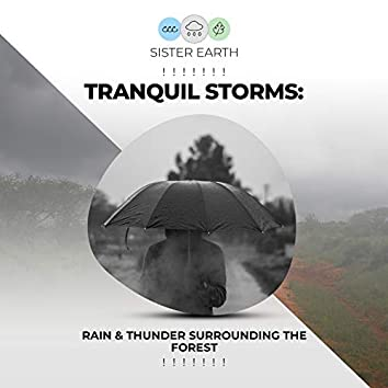 ! ! ! ! ! ! ! Tranquil Storms: Rain & Thunder Surrounding the Forest ! ! ! ! ! ! !