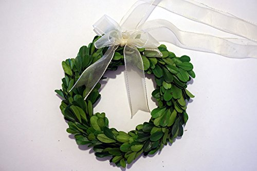 Tradingsmith Preserved Boxwood Wreath 6 in
