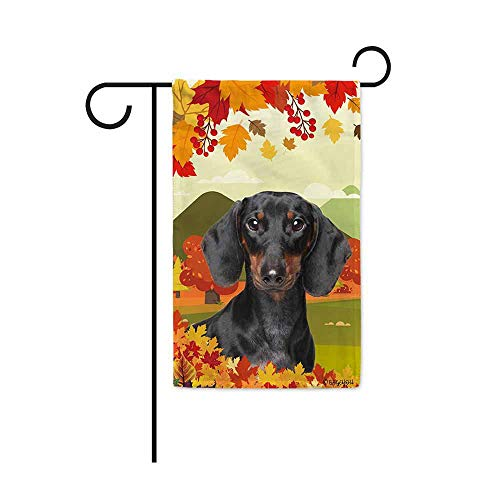 BAGEYOU Hello Fall in The Countryside with My Love Dog Dachshund Decorative Garden Flag Autumn Maple Leaf Banner for Outside 12.5X18 Inch Printed Double Sided