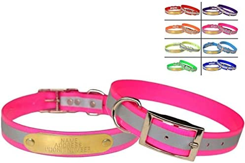 Warner Brand Reflective Dayglo Dog Collar Free Engraved Brass ID tag Pink 19 product image