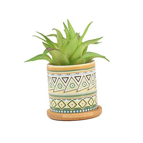 Cucheeky - Maceta pequeña para plantación de flores o escritorio para decoración de oficina