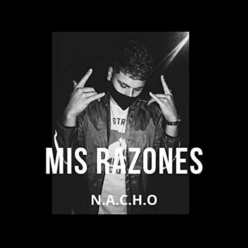 N.A.C.H.O