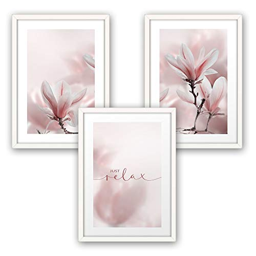 3-teiliges Premium Poster-Set   Magnolie   Deko Bild für Ihre Wand   optional mit Rahmen   Wohnzimmer Schlafzimmer Modern Fine Art   DIN A4 / A3 (A4, weißer Rahmen)