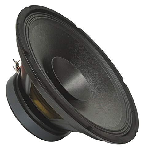 PA Bass Fullrange 300 mm