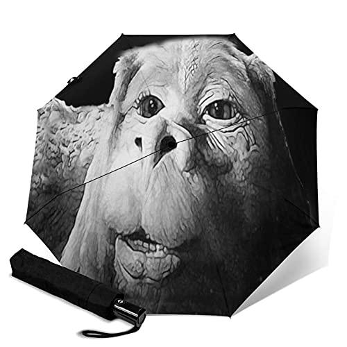傘 レインウェア 折りたたみ傘 軽量 ネバーエンディングストーリーデザインのスクエアファルコンザラックドラゴン 晴雨兼用 耐風構造 高耐久度 超撥水 梅雨対策 収納ポーチ付き