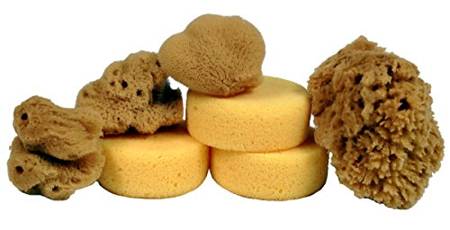 Creative Hobbies Synthetic and Natural Silk Sponges for Painting, Crafts, Ceramics, Pottery and More, Value Pack of 7 Sponges