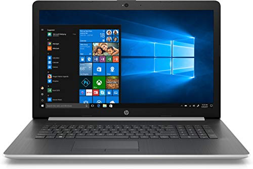 HP 17-ca1004ng (17,3 Zoll / Full HD IPS) Laptop (AMD Ryzen 5 3500U, 8 GB DDR4 RAM, 1 TB HDD, 256 GB SSD, AMD Radeon Vega 8, Windows 10 Home) schwarz / silber