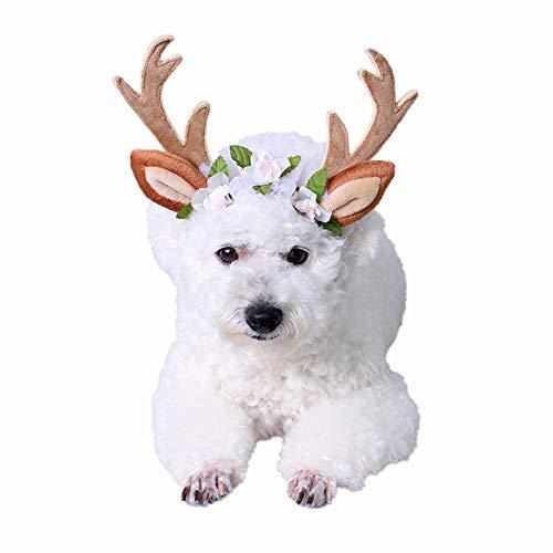 PEDOMUS Katze Kostüm Weihnachten Kopf Hoop Weihnachten Rentier Geweih Katze Hund Headwear mit Blumen für Katze und kleine Hund Größe S
