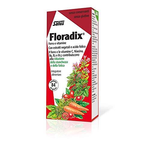 Floradix fer + plantes en comprimés