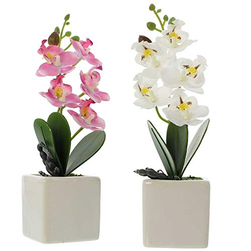 SIDCO Orchidee Kunstpflanze 2 Stück Blume künstlich Deko Pflanze Topfpflanze Callas