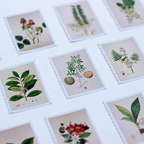 Luck Fortuna botanico affrancatura stile timbro adesivi 50pezzi scrapbooking