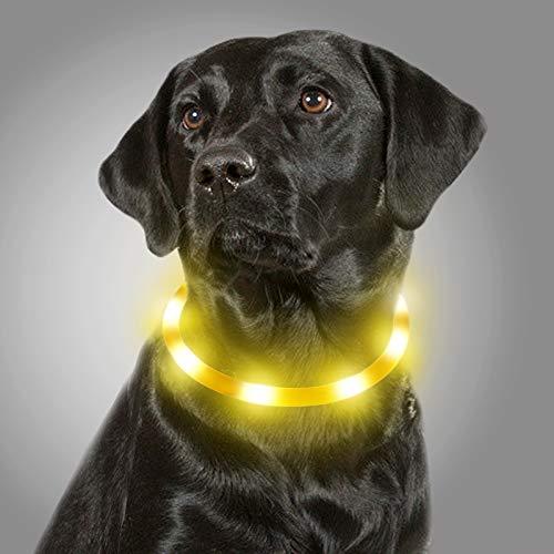 Joytale Collar Luminoso Perro, Collar para Mascotas LED Ajustables con Luz, Collares Recargable USB para Perros Pequeños, Medianos y Grandes, Amarillo