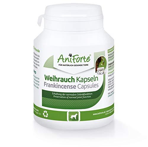 AniForte Weihrauchkapseln für Hunde 100 Stück - Natürliche Gelenktabletten mit Boswelliasäure, Unterstützung der Gelenke & Gelenkfunktion, Weihrauch Tabletten für Hundegelenke