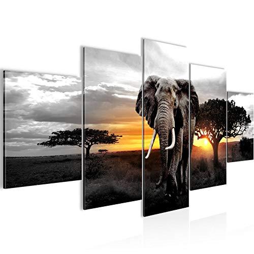 Bilder Afrika Elefant Wandbild Vlies - Leinwand Bild XXL Format Wandbilder Wohnzimmer Wohnung Deko Kunstdrucke Gelb Grau 5 Teilig - MADE IN GERMANY - Fertig zum Aufhängen 001253c