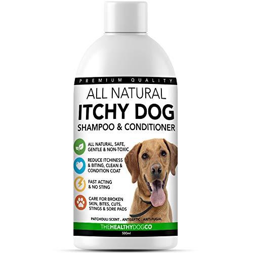 The Healthy Dog Co Champú para Perros Que Pica | Alivio de la Comezón y Cuidado de la Piel | Tratar la Picazón, la Piel Agrietada y Las Heridas