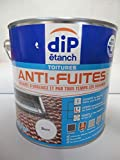Pot de 2,5L Dip étanch toitures anti-fuites colmates d'urgence et par tous les temps les fissures