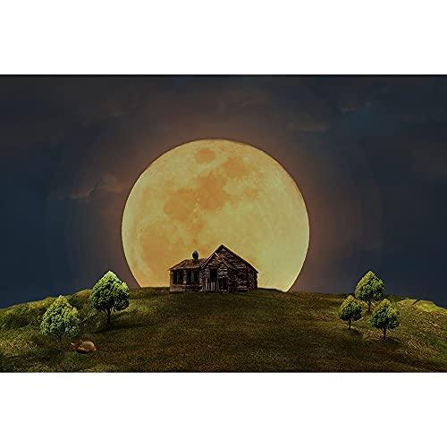 SANSHUI Jigsaw House au Clair de Lune 500/1000/1500/2000 Morceaux de Puzzle de Jigsaw, Peinture de décoration Cadeau de Jouet d'intérêt 0315 (Color : Partition, Size : 500 Pieces)