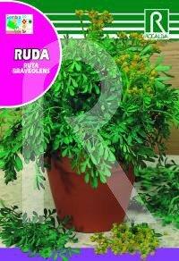 Semilla ruda - Rocalba