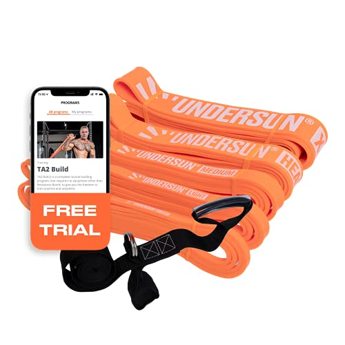 Undersun Fitness Resistance Loop Exercise Bands. Set of 5 Pullup Assistance Workout Bands with Free Week Workout Program & Door Anchor. Stretching, Mobility & Powerlifting Resistance Bands